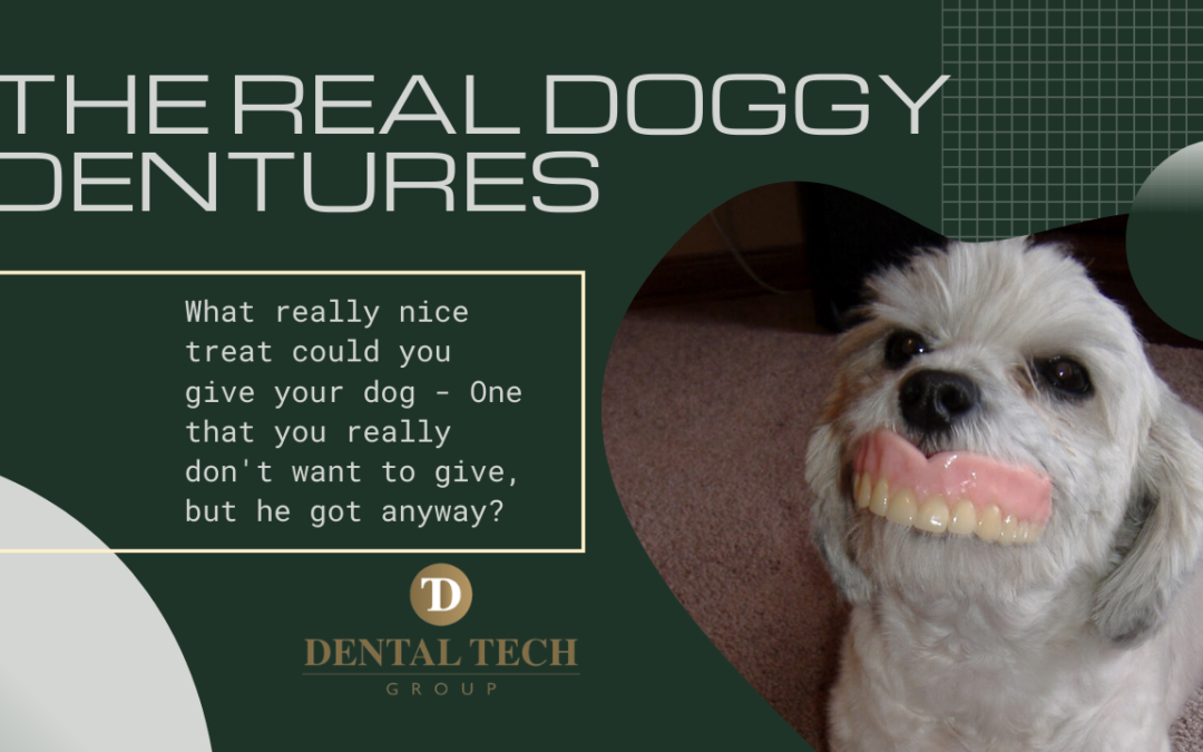 Why My Dog Wants My Dentures