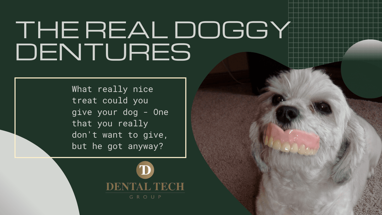 dentures and dogs